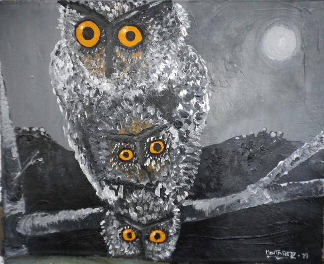 Out of darkness (Owls)